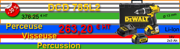 Perceuse électroportative Dewalt DCD785L2