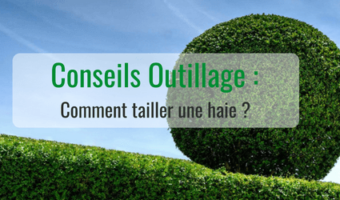 Comment tailler une haie ?