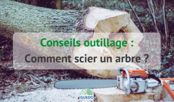 Comment scier un arbre ?